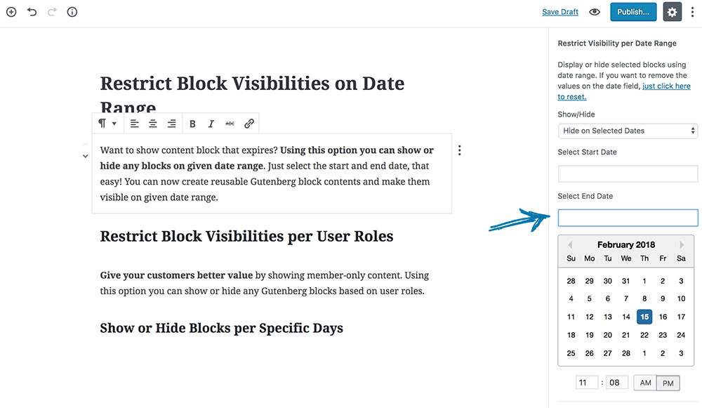 Restrict Block Visibilities on Date Range