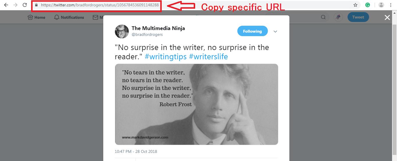 Gutenberg WordPress Editor embed block